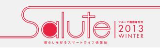 salute-13win
