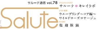 salute-78